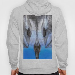 Concorde Abstract Hoody