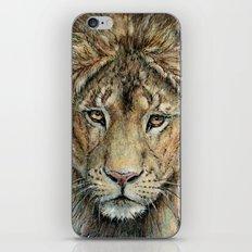 Lion 325 iPhone & iPod Skin