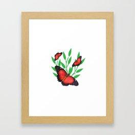 Red Lacewing Butterflies Framed Art Print