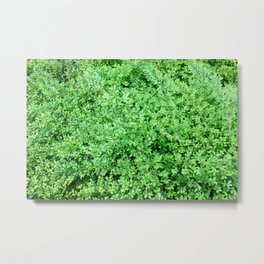 Textures in Green Metal Print