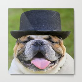 Silly Bulldog In Top Hat Metal Print