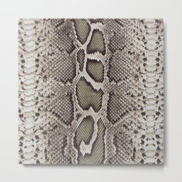 Faux Boa Constrictor Snake Skin Design Metal Print