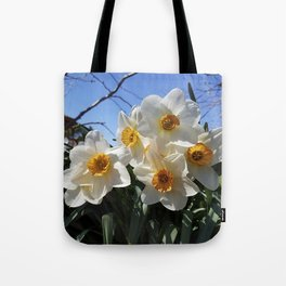 Sunny Faces of Spring - Gold and White Narcissus Flowers Tote Bag