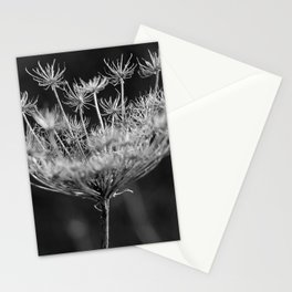 Withered pointed hogweed Stationery Cards