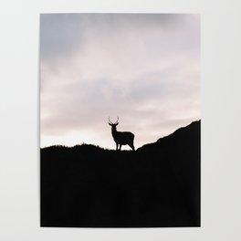 Oh deer - Scottish, highlands | landscape photo abstract black contrast nature scotland Poster