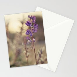 Purples Stationery Cards