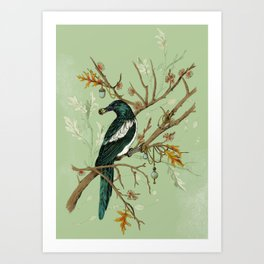 Magpie Jewels Art Print