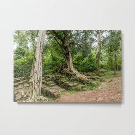 Strangler Fig Trees and Stones in the Angkor Archaeological Park, Siem Reap, Cambodia Metal Print