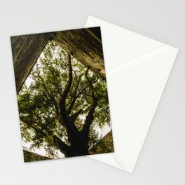 Under the Yew Stationery Cards