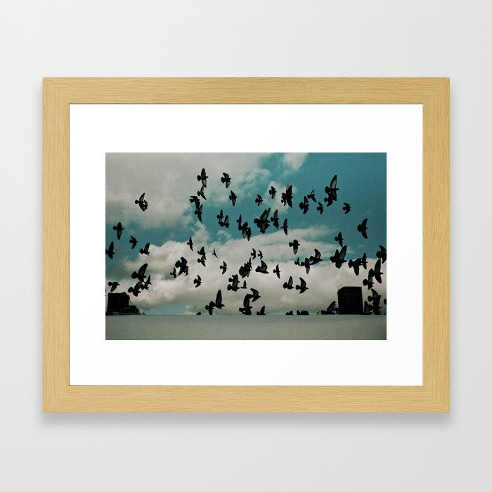 Birds 002 Framed Art Print