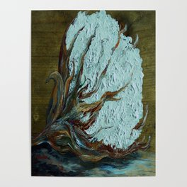 Cotton Boll on Wood Poster