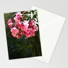 Flowers in Barcelona. Stationery Cards