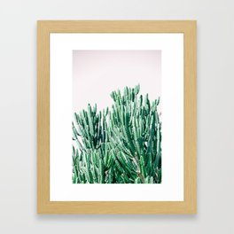 A Gathering of Cacti Framed Art Print