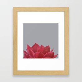 Red Succulent Framed Art Print