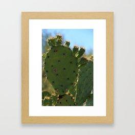 Bigfoot Cacti Framed Art Print