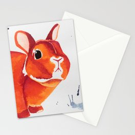 A Curious Looking Bunny! Stationery Cards