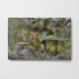 New Leaves Metal Print