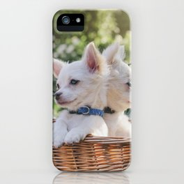 manny + chico iPhone Case