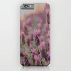 Lavender Stories iPhone 6 Slim Case