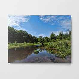 Summer Afternoon on the Bashakill Wetlands Metal Print