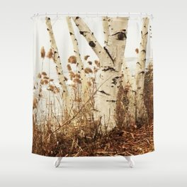 Autumn Birches by the Lake Shower Curtain