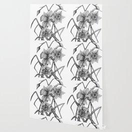 Daffodil Sketch Wallpaper