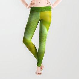 Tulip Print Leggings