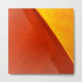 Contemporary Leaf Design, Version #4 Metal Print