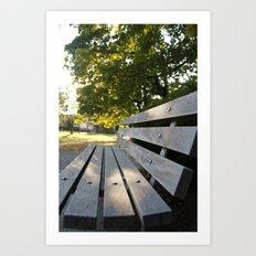 Empty Park Bench Art Print