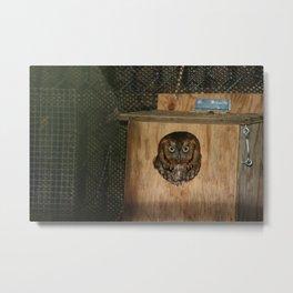 Hibou means owl Metal Print