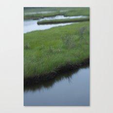 Cattus Island Canvas Print