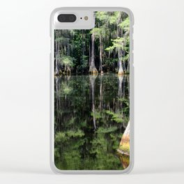Florida Beauty 4 Clear iPhone Case