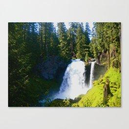 Gushing Waterfall Canvas Print