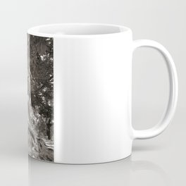 1000 years old chestnut tree Coffee Mug