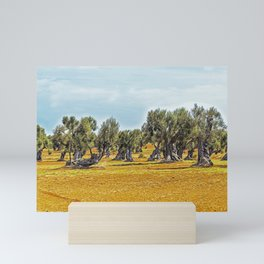 Olive trees in the countryside near the medieval white village of Ostuni Mini Art Print