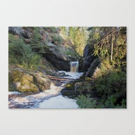 The stream in mountains Canvas Print