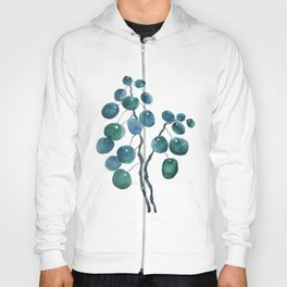 Chinese money plant watercolor Hoody