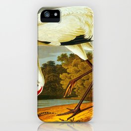 Hooping Crane John James Audubon Birds Of America Scientific Illustration iPhone Case