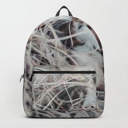 Kitten wool Backpack