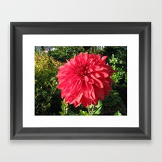Blooming Just For You Framed Art Print