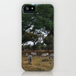 Zebras. iPhone Case