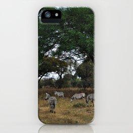 Zebras. iPhone Case