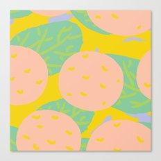 Pink Oranges Canvas Print