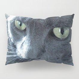 Purrr-fect Pillow Sham
