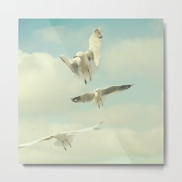 Seagull II Metal Print