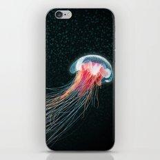 Jellyfish deep sea ocean creature illustration home decor drawing iPhone & iPod Skin