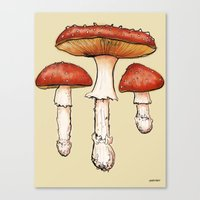 mushrooms Canvas Prints featuring Mushrooms by CHAR ODEN