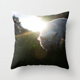 Exploring Throw Pillow