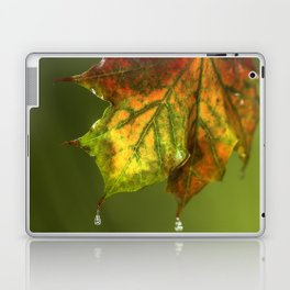 Sugar Coated Maple Leaf Laptop & iPad Skin