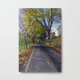 Walks In The Autumn Metal Print